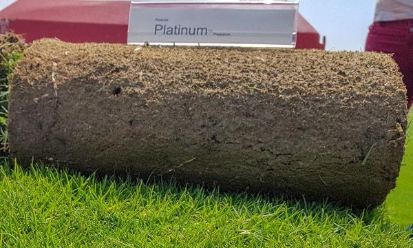 """Тревен чим """"Платинум"""""""