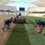 """Подмяна на тревната настилка на Олимпийски стадион, гр. Атина - тревен чим """"Олимпико"""""""